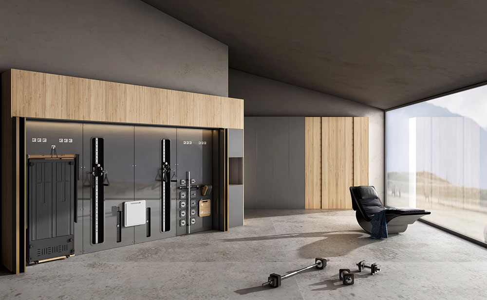 G-Wall Modular Highly-Integrated Home Fitness System
