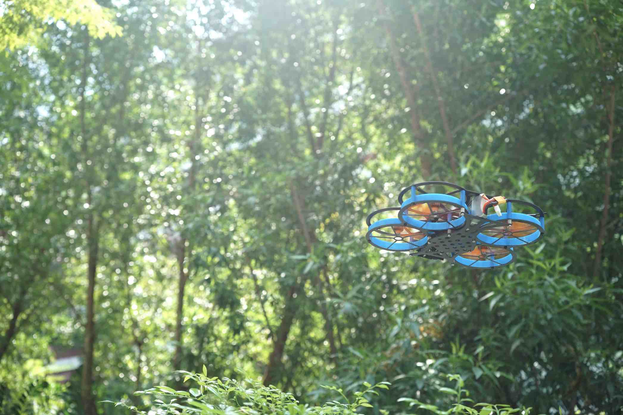 TIM: Tree Inspection Microdrone